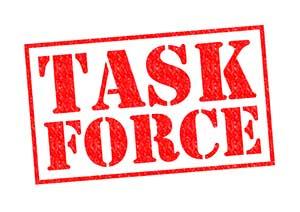 Illinois Nursing Home Task Force